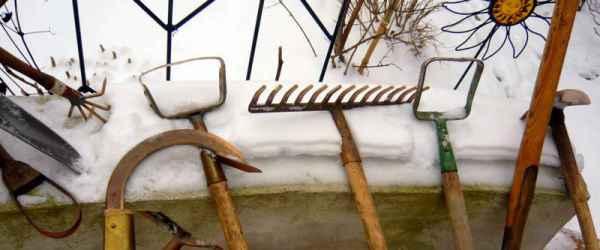 selbsternte-werkzeug-600x250-crop-49-25.jpg